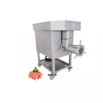 Wm - A3000 Electric Carrot Juicer with Ce Presseagrumes