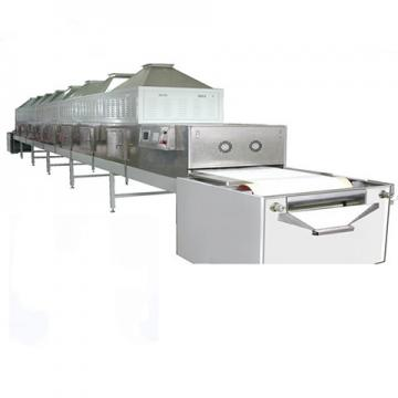 Mesh Belt Dryer with Continuous Multilayer Conveyor