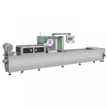 Automatic Continuous Type Meat Beaf Vegetable Vacuum Packing Packaging Machine