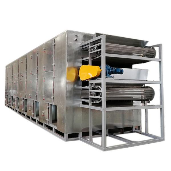 Continuous Automatic Shredded Radish Multi Layer Mesh Belt Dryer Drying Machine for Food Plant #3 image