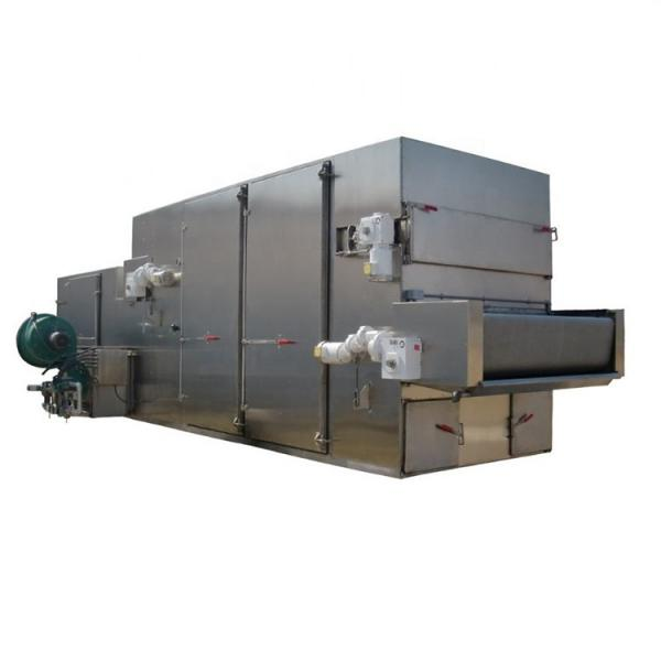 Continuous Automatic Shredded Radish Multi Layer Mesh Belt Dryer Drying Machine for Food Plant #1 image