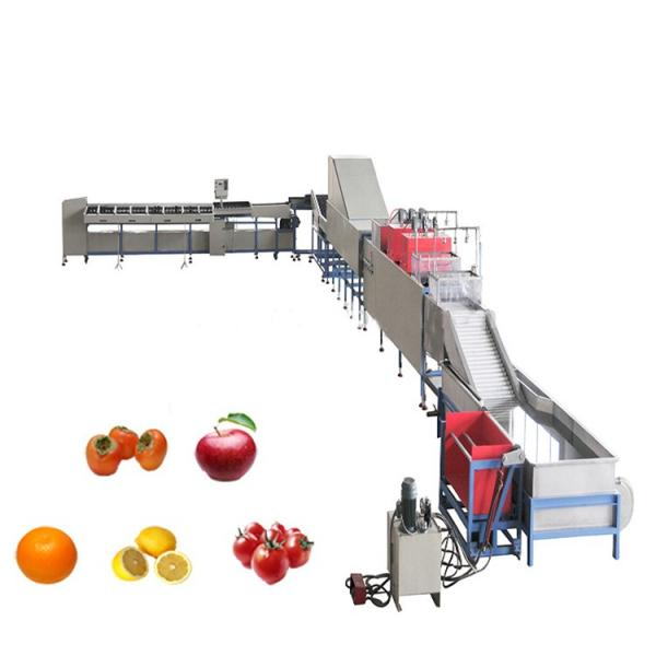 Canned Tomato Fruit Ketchup/Juice/Jam/Paste/Sauce Fillling Line Processing Production Line Making Line Sauce Processing Mixing Line Paste Filling Line #1 image